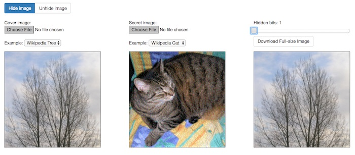 image-steganography-online-tool